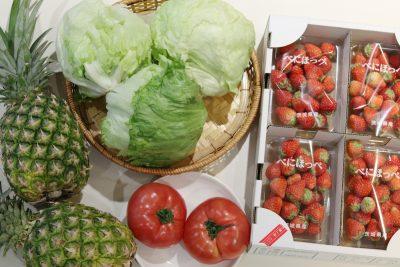 亀戸の激安野菜と都内のスーパーの野菜の値段の差は〇〇円!激安の町は侮れなかった